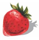 Dieticians@Health Logo